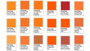 Orange Color Meaning & Orange Symbolism 700x400